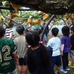 稲城第四小学校収穫体験